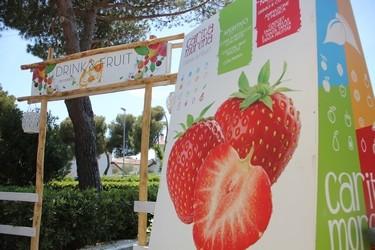 Chiosco Frutta Carita Morena